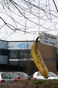 Free Fairtrade Banana Anyone?