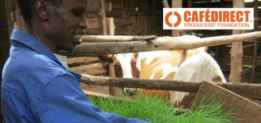 Cafedirect help farmers' livelihoods