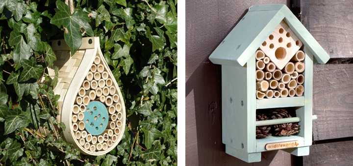 Homes for bees