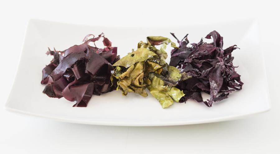 seaweed meat alternatives