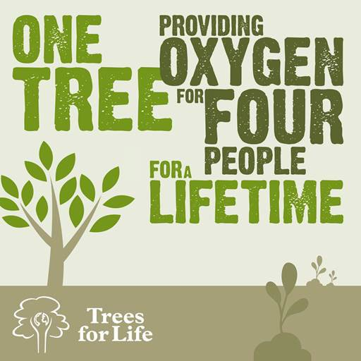 Providing oxygen for four people