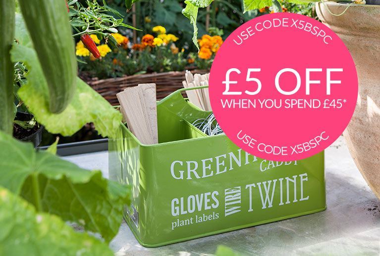 National Allotment Week, Dig In - Save £5 off £45* Use Code X5BSPC